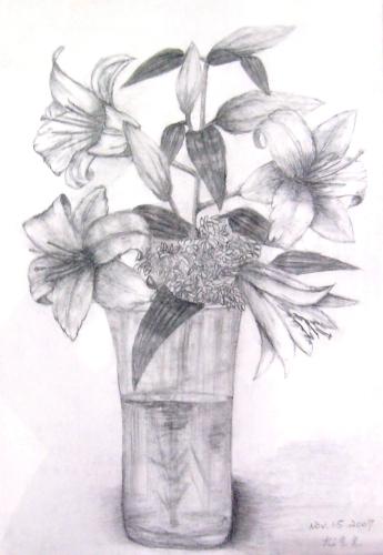 >> 文章内容 >> 百合花静物素描图片大全  谁能告诉我怎么画百合花?